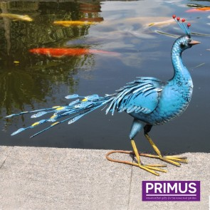Blue Metal Peacock