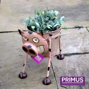 Goofy Pig Planter