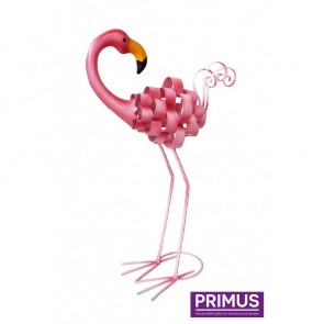 Fancy Flamingo - Backwards