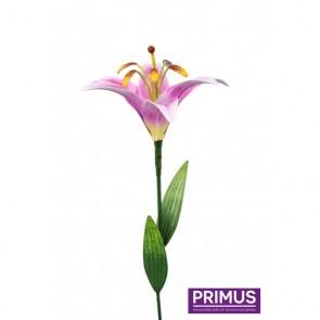 Medium Lily Pink